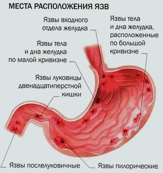 Центр диагностики и лечения боли и п павлова